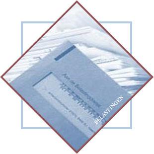 logo_belasting